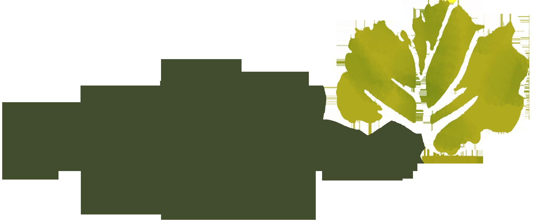 Orto Botanico dell' Università di Torino