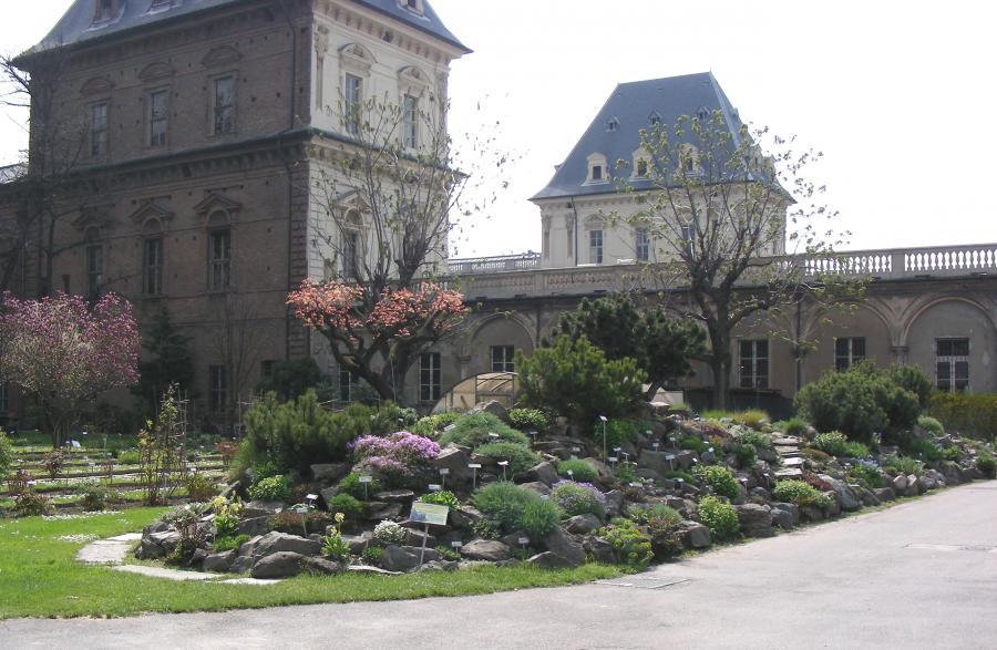 L'Alpineto dell'Orto Botanico di Torino (foto V. Fossa)