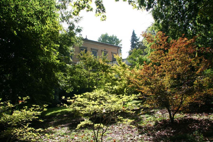 Vista del Boschetto, Orto Botanico di Torino
