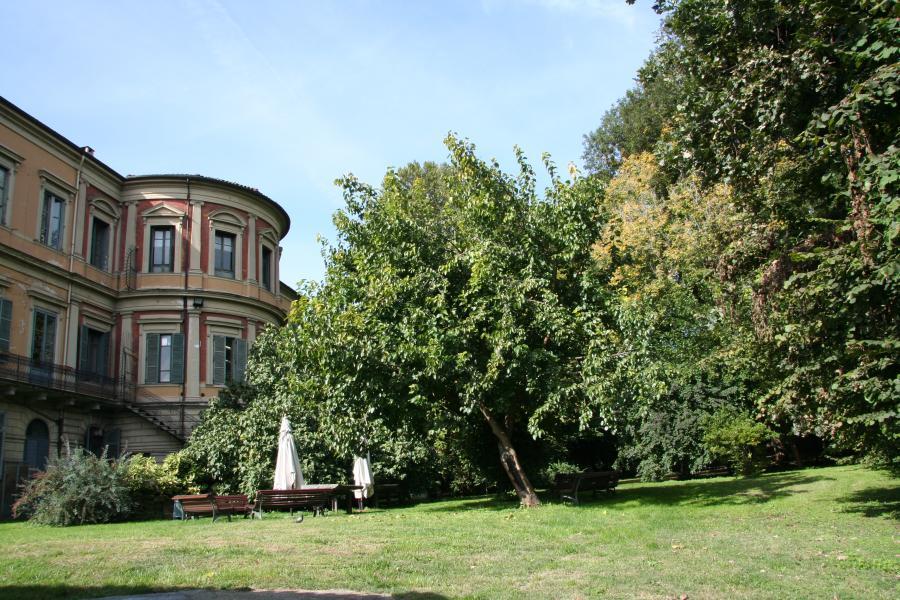Boschetto, Orto Botanico di Torino