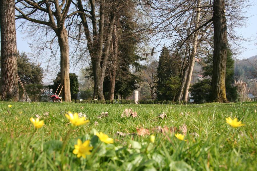 Il Giardino, Orto Botanico di Torino (foto G. Teppa)