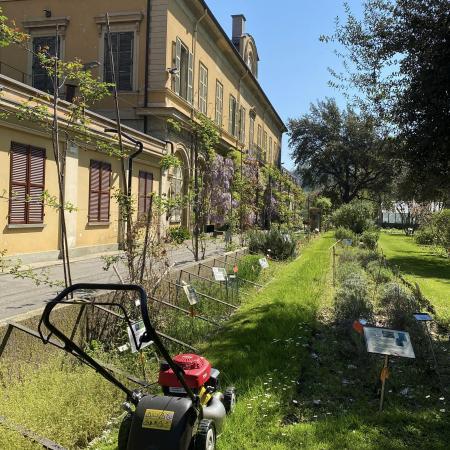 Taglio erba Giardino - 2 aprile (foto L.M. Mingozzi)