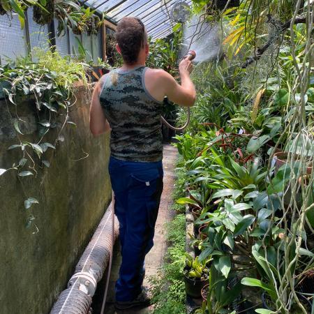 L'irrigazione della serra tropicale (foto L.M. Mingozzi)