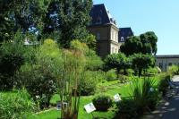 Il Giardino dell'Orto Botanico di Torino (foto A. Biagiolini)
